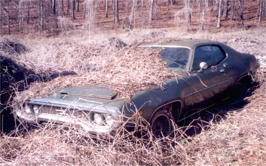 Dodge Charger Junk Yards Cars From Salvage Yards ...